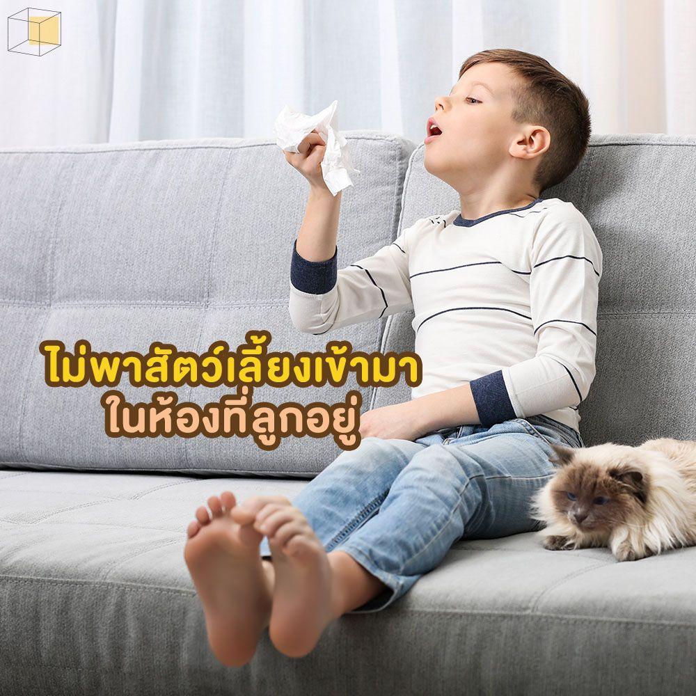 งดพาสัตว์เลี้ยงเข้าห้อง ป้องกันภูมิแพ้ในเด็ก