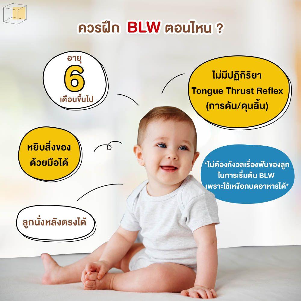 Baby Led Weaning (BLW) ฝึกตอนไหน
