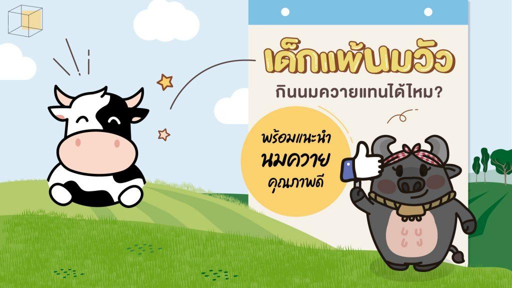 ถ้าเด็กแพ้นมวัว กินนมควายแทนได้ไหม