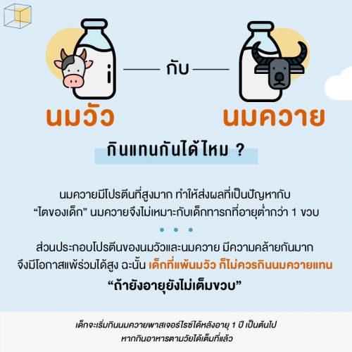 นมวัว vs นมควาย